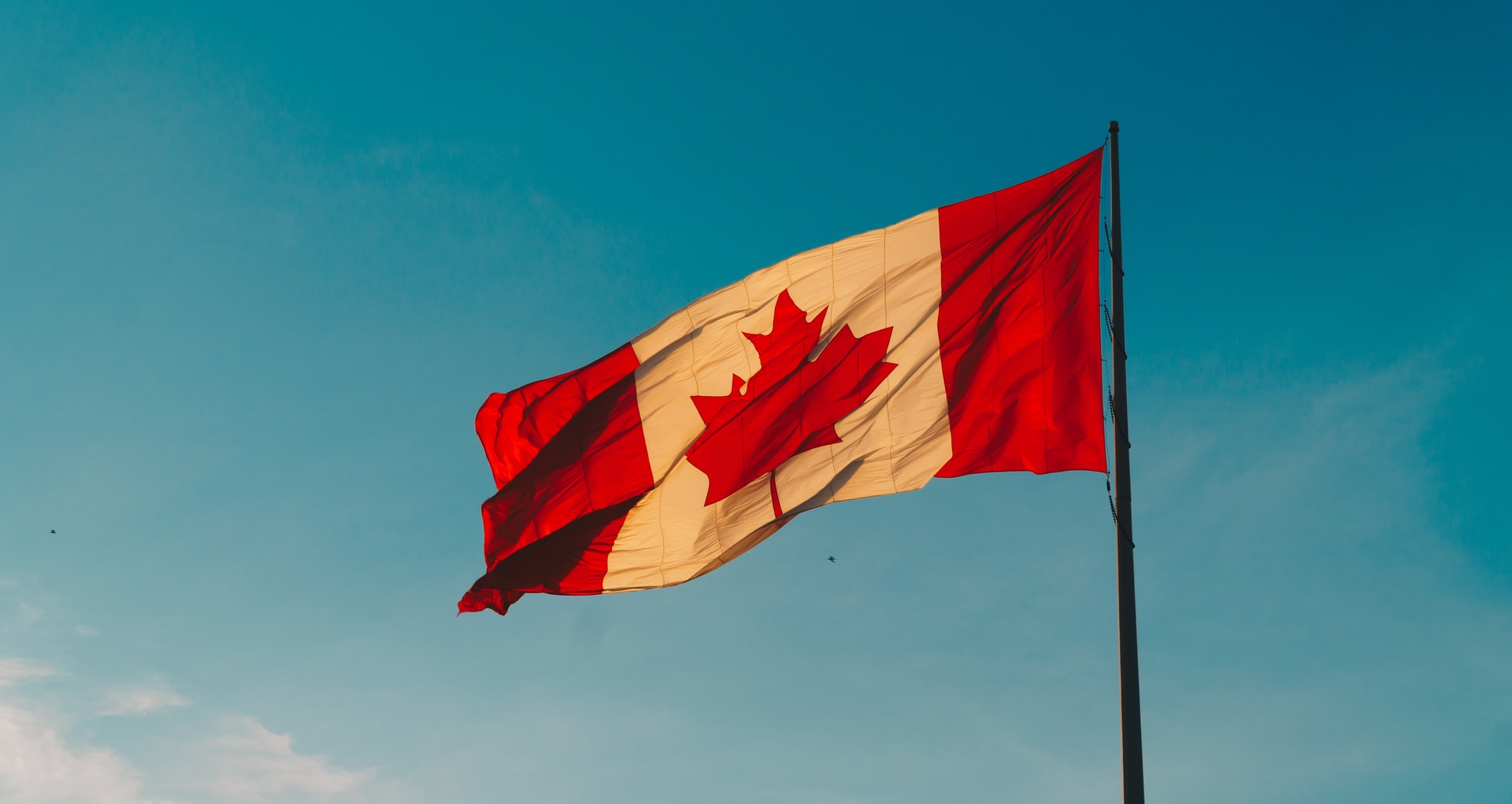 The Best Scholarships For Canadian Students