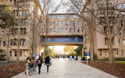 Universities With A High Acceptance Rate  In Australia For International Students