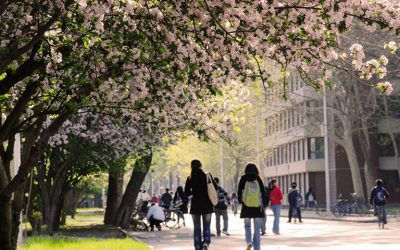 6 Universities With A High Acceptance Rate For International Students in China