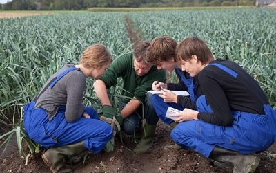 The Best Agriculture Scholarships Around The World